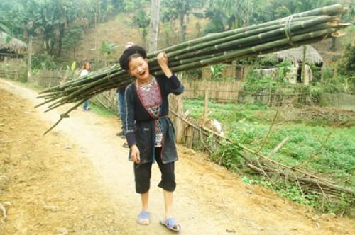 Voyage au Nord Vietnam du groupe de madame et mr Jean jacques Fongarland et Isabelle BIROT (Groupe de 6 personnes - France )