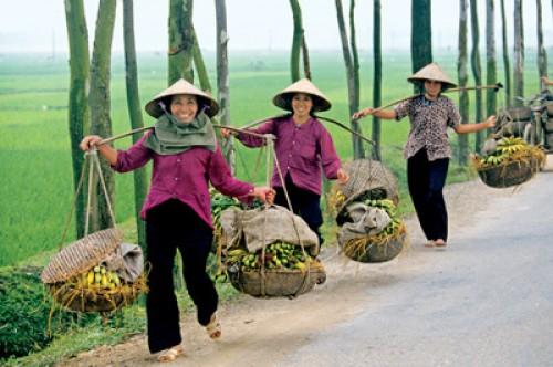 Voyage Vietnam du groupe de Mr SCHUTZ Jacques (7 personnes)