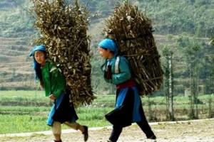 Découverte approfondie du Vietnam en 5 semaines