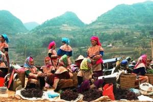 Le Vietnam du Nord au Sud 26 jours