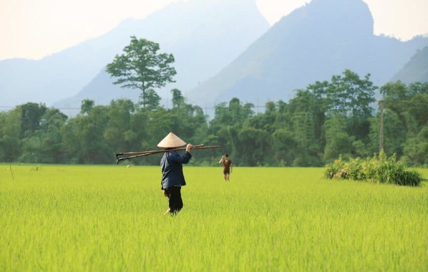 nord-du-vietnam