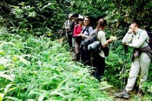 Trekking Vietnam (6 jours à Ha Giang)