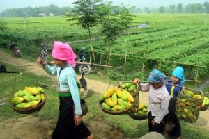 Vietnam authentique 9 jours