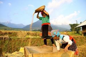 Vietnam Nord autrement 24 jours