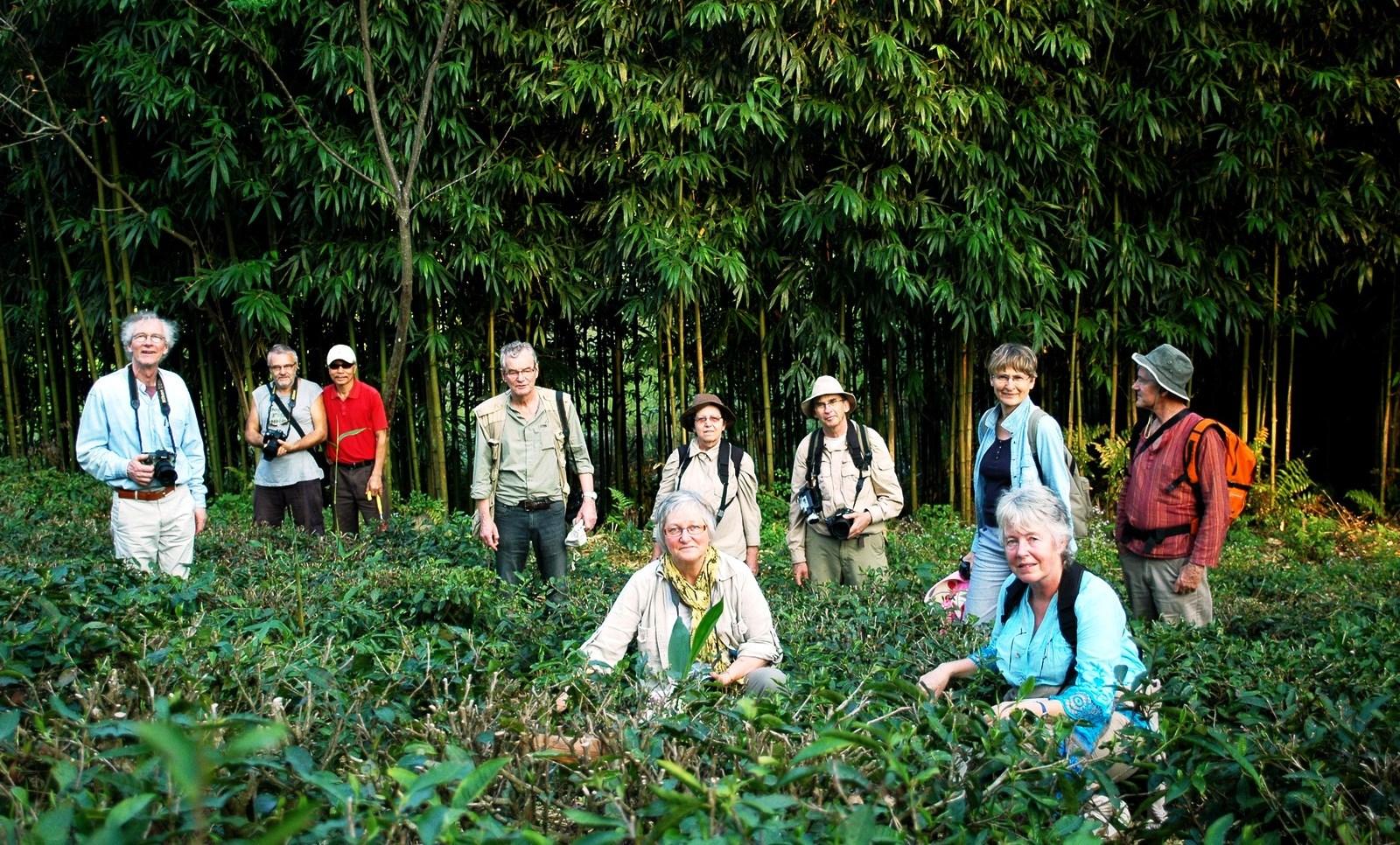 Temoignages de voyageurs au Vietnam
