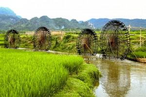 Découverte du Nord Vietnam 20 jours