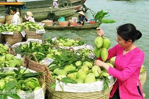 Le Sud Vietnam et plage de Phu Quoc 12 jours