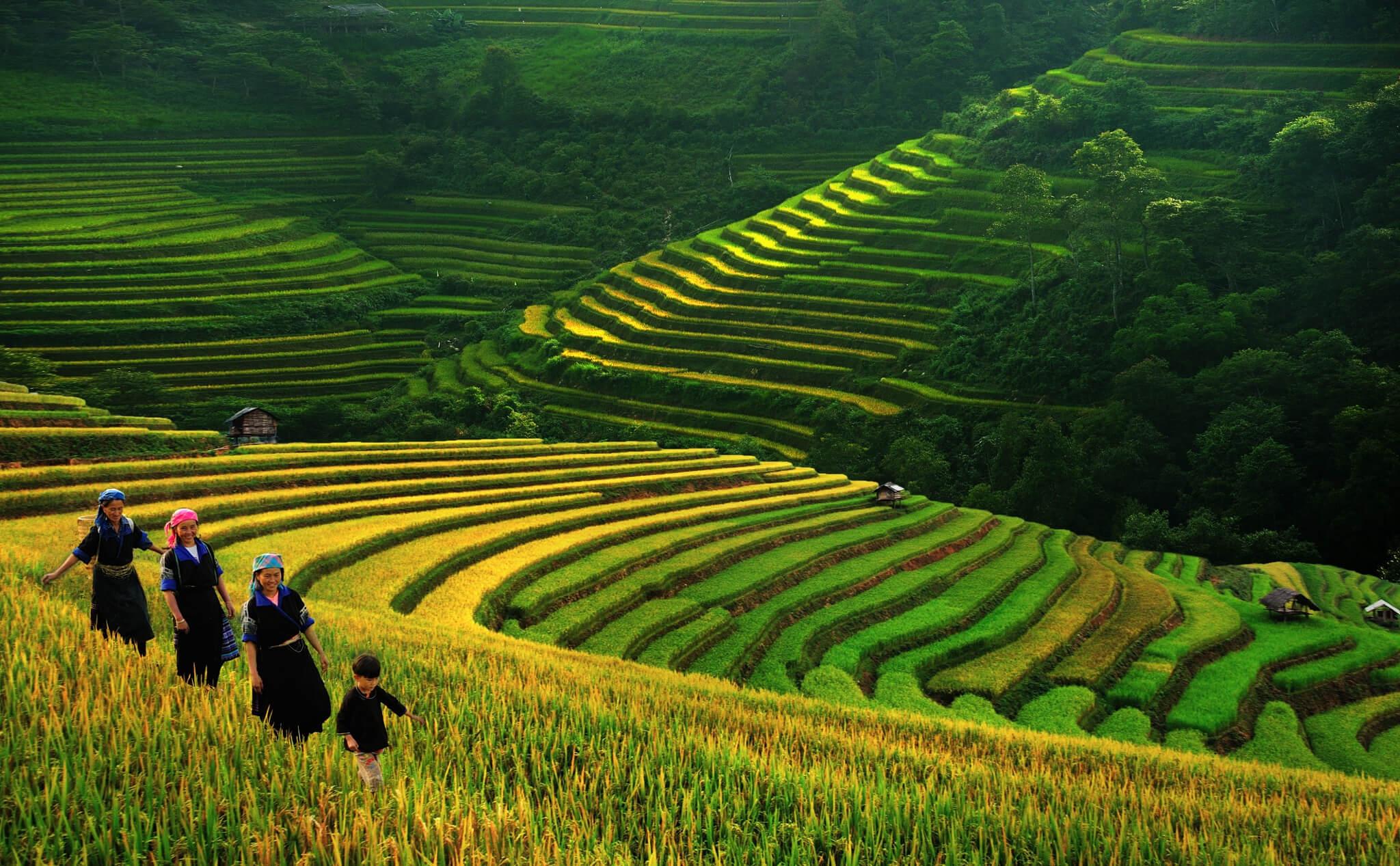 trekking-vietnamtrek-2-jours-a-sapa-1