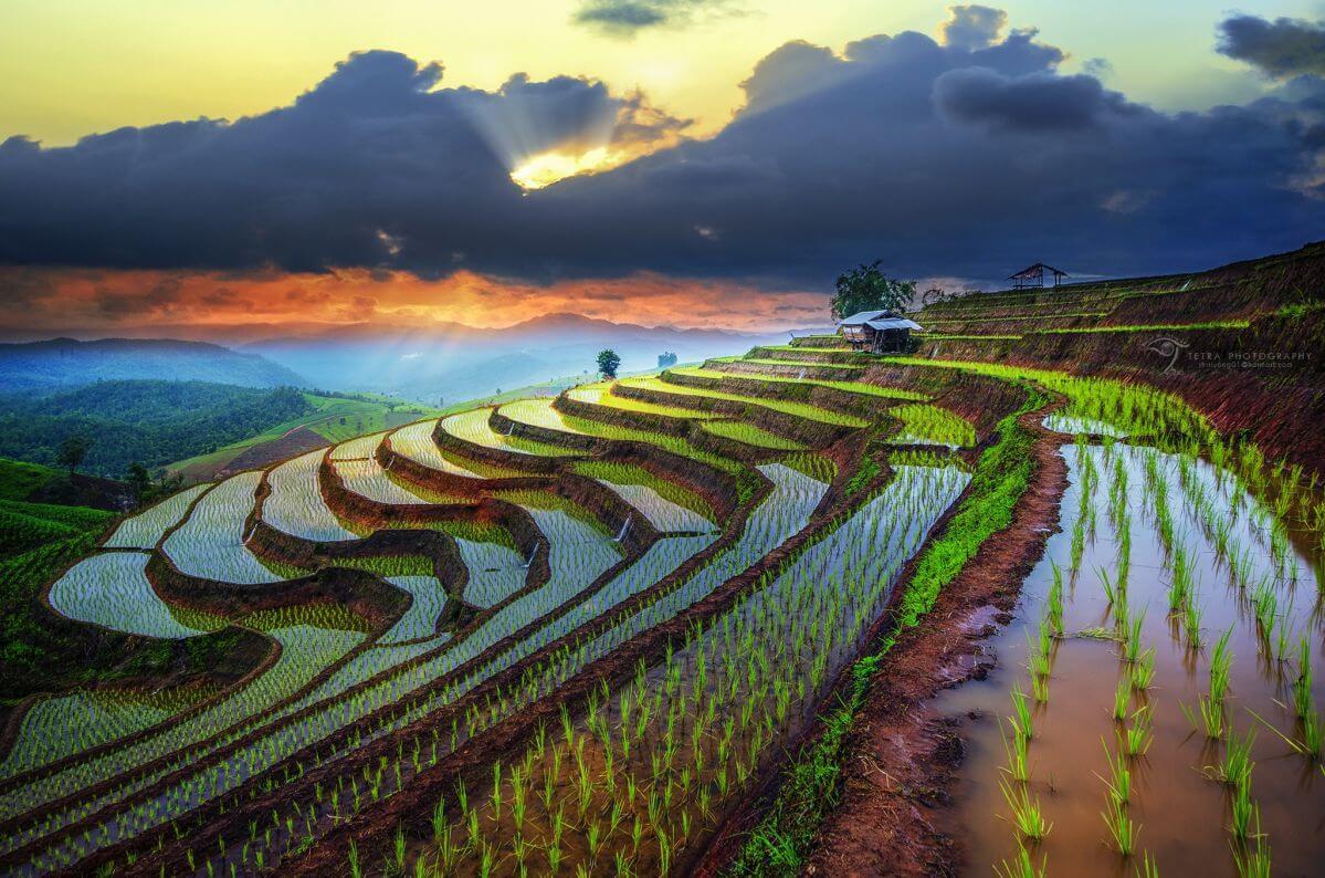 voyage-vietnam-nord---couleurs-du-marche-de-l-amour-khau-vai---une-fois-par-an-1