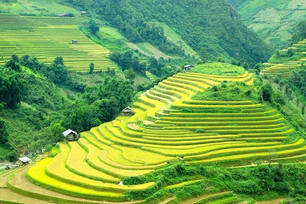10-incontournables-a-visiter-au-vietnam-sapa
