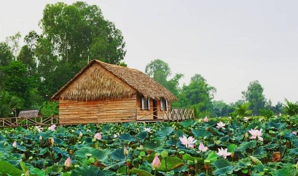 6-activites-a-ne-pas-rater-dans-le-delta-du-mekong-visite-des-champs-de-lotus-a-dong-thap