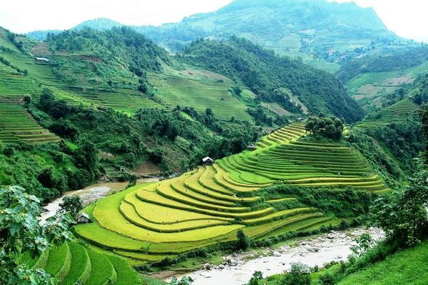 mu-cang-chai-rizieresenterrasses
