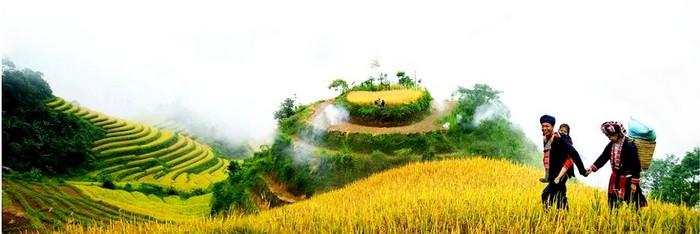 riziere-et-paysages-nord-vietnam