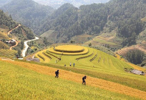 trekking-a-mu-cang-chai