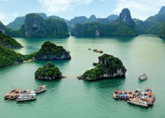 Baie d'Halong: Halte naturelle paisible