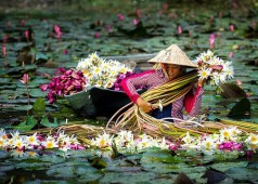 6 meilleures destinations au Sud du Vietnam