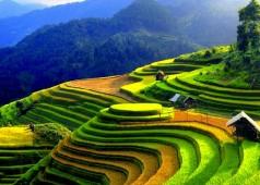 Les rizières en terrasses au Nord du Vietnam