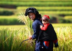 Où visiter au Vietnam en septembre?