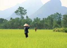 Raisons pour voyager avec Agenda Tour Vietnam